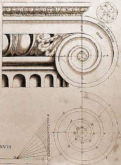 ( - p.mc.n. ) Capitel Jónico Fibonacci