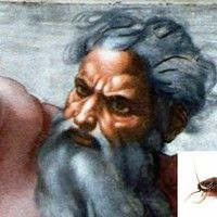God Proud Of Cockroaches