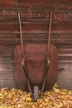 Rusty wheelbarrow by an old barn with autumn leaves by Deirdre Malfatto #stocksy #realstock