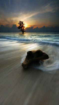 Beautiful Photography.Great Shot!