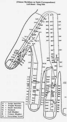 Disease to Ease: Byol Meridian - Left hand yang side