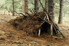 8 Basic Survival Skills That You Ought To Know - The Prepper Journal
