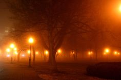 kansas-city-grand-avenue-park-in-fog-david-dunham.jpg (900×600)