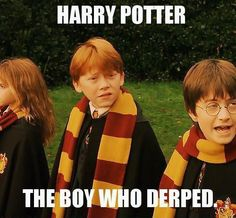 Harry Potter has given the world,a source of puns and memes. A post to bring to you some the 'funniest' from the world of Harry Potter. Magie Harry Potter, Harry Potter Love, Harry Potter Fandom, Harry Potter Memes, Potter Facts, No Muggles, Pokemon, Funny Memes, Hilarious