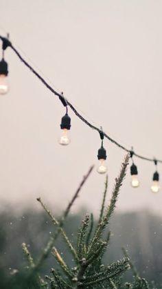 Christmas lights | Pinpanion