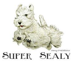 Super Sealyham Terrier