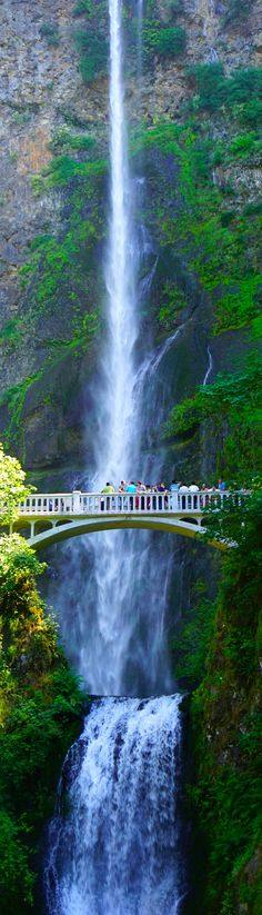 Multnomah Falls, Oregon, US.one of the beautiful sites close to Portland, OR. Zach and I fell in love with it the first time we saw it 49 years ago. Places Around The World, Oh The Places You'll Go, Places To Travel, Places To Visit, Around The Worlds, Beautiful Sites, Beautiful Places, Amazing Places, Amazing Things