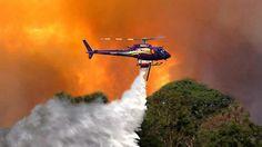 Gubernur DKI Jakarta Basuki Tjahaja Purnama rencana akan membeli Helikopter untuk membantu memadamkan kebakaran hutan yang menyebabkan asap.