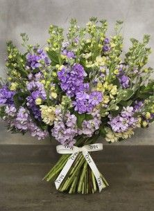 lavendar stock bouquet