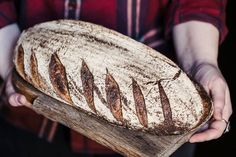 Our carb-loaded list of all the best places to get artisan breads, beautiful cakes, flaky pastries, and every other baked good your heart desires. Good Bakery, Best Bakery, Pastry And Bakery, Pastry Shop, Philadelphia Recipes, November Thanksgiving, French Bakery, Flaky Pastry, Sticky Buns