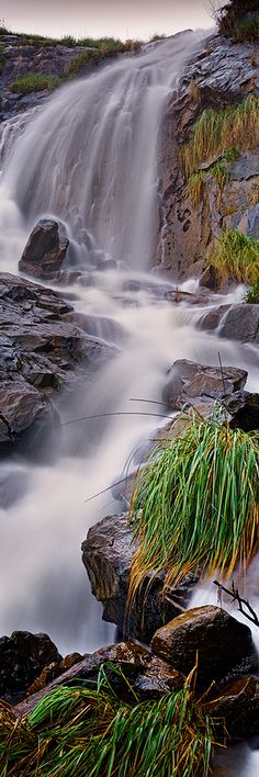 Lesmurdie Falls - Western Australia - Gallery - Kirk Hille Photography - Arcadia Floral & Home Decor - Houston TX - Western Australia, Australia Travel, Beautiful World, Beautiful Places, Les Cascades, Beautiful Waterfalls, Adventure Is Out There, Natural Wonders, Amazing Nature