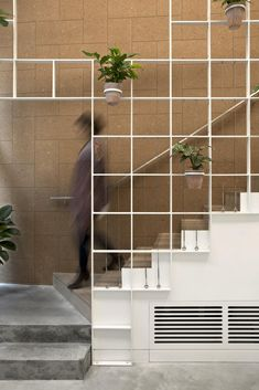 Neiheiser Argyros, cafe, shop, London, city, England, UK, grid, plants, minimal, simplicity, Olive & Squash