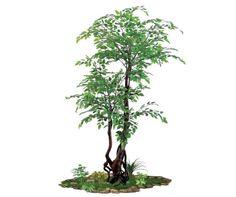artificial spacegreen maple indoors Greenery, Trees, Indoor, Interior, Tree Structure, Wood