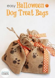 Easy DIY Halloween Dog Treat Bags for trick or treating dogs. This Halloween don't forget to treat the pups with Big Heart Pet Brand #TreatThePups #easydogtricks