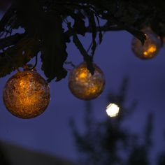 Solar String Lights Lowes Endearing Lowes Outdoor Led Christmas Lights And Terrific Lowes Outdoor Decorating Design