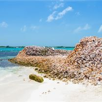 Tall Mounds of Shells on the Island of the Archipelago Los Roques, Venezuela