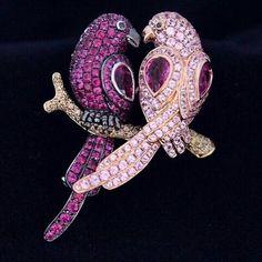 Goldiaq birds
