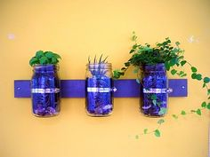 DIY mason jar hanging planter, same design works for indoor storage, too. How to at http://bit.ly/lc1TxN