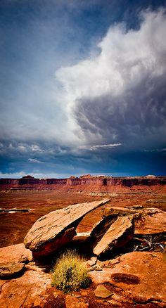 Canyonlands, Ut