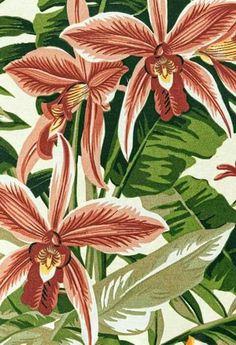 Tropical Art, Tropical Leaves, Tropical Flowers, Tropical Prints, Textiles, Textile Prints, Painting Patterns, Print Patterns, Vintage Hawaiian