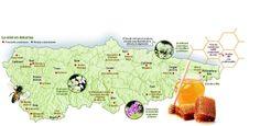 El mapa de la miel en Asturias - elcomercio.es Celtic Nations, Natural, Maps, Honey, Traveling, Culture, Cabin, Nature, Au Natural