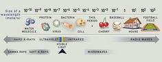 The Visible Spectrum | Causes of Color Visible Spectrum, Electromagnetic Spectrum, Have Board, Chemistry Class, Easily Offended, Science Education, Fractions, Color Theory, Global Warming