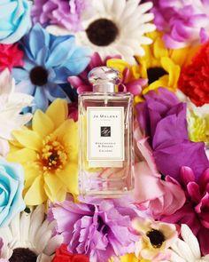 500+ Best Fragrances images in 2020