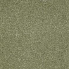 Platinum Plus Enraptured II - Color Almond fudge 12 ft. Carpet-0173D-38-12 at The Home Depot