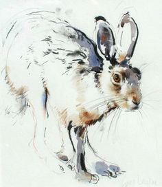 Brown Hare by Lucy Newton Easy Watercolor, Watercolor Sketch, Watercolor Animals, Watercolor Paintings, Watercolors, Bunny Painting, Painting & Drawing, Animal Sketches, Animal Drawings