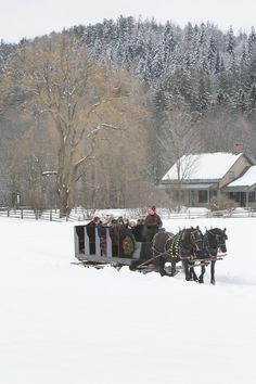 A vintage sleigh ride at Billings Farm and Museum in Woodstock, Vermont, a working farm and museum dedicated to preserving its rural heritage.