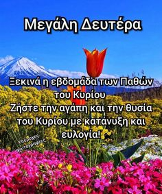 Αγαπημένα Orthodox Easter, Greek Easter, Beautiful Pink Roses, Greek Quotes, Christian Faith, Beautiful Pictures, Mornings, Decoupage, Pretty Pictures
