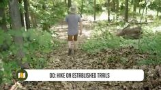 Do's and Don'ts for Leave No Trace Camping