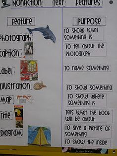 Non-fiction text feature anchor chart