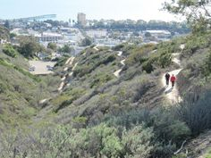Grant Park trail rises 600 ft above City Hall and downtown Ventura.  Future site of Ventura Botanical Gardens.