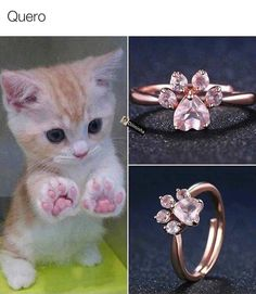 Bear Paws, Dog Paws, Kitty Paws, Rosa Rose, Cat Ring, Accesorios Casual, Ring Set, Cute Bears, Cute Jewelry