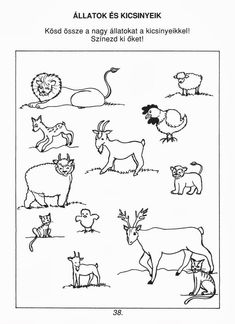 Albumarchívum Nature Study, Preschool Worksheets, Pre School, Pediatrics, Literacy, Coloring Pages, Activities For Kids, Kindergarten, Clip Art