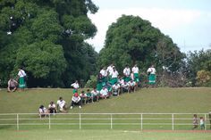 Students watching a rugby match in Nuku'alofa, Tonga