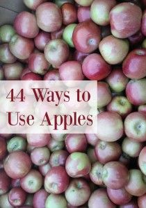 44 Great ways to use apples! I love fall.