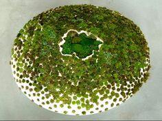 Moss on Ceramic  By Mineo Mizuno  Born 1944, Gifu Prefecture, Japan  Lives/works in Los Angeles since 1964.  www.mineomizuno.com