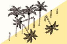 palmiers-amélie fontaine POUR FAIRE PLAISIR À MUK