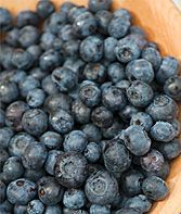 Duke Blueberry Plants, How to Grow Fruit Plants at Burpee.com