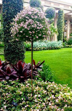 Michael Larkin Garden Design