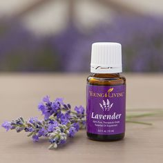 Fly and mosquito repellent. 25 drops lavender oil, 1 cup water in a spray bottle. Shake well before spraying. Spray on skin and clothing. Safe for children and pets. Use on any surface, such as tables, tents, chairs, etc.
