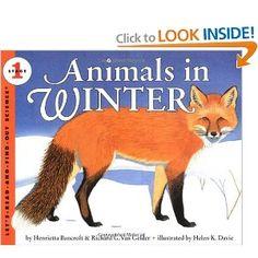 books, animals, winter, learn, bancroft, henrietta, cc scienc, letsreadandfindout scienc, scienc cycl