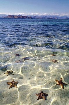 .Grand Cayman Island...my dream vacation spot!