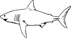 Printable Shark Coloring Pages . 24 Printable Shark Coloring Pages . Free Printable Shark Coloring Pages for Kids Shark Coloring Pages, Fish Coloring Page, Free Coloring Pages, Coloring Sheets, Kids Coloring, Printable Coloring, Coloring Books, Shark Images, Shark Pictures