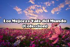 Los Mejores Vals del Mundo (Colección)