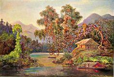 Ernst Haeckel | Aralien mit Lianen am Schwarzen Flusse (Ceylon) | http://upload.wikimedia.org/wikipedia/commons/2/21/Haeckel_22.jpg