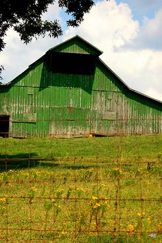 Old Green barn in Charlotte,TN