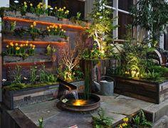 bassin de jardin avec arrosoir et plantes floraison jaune